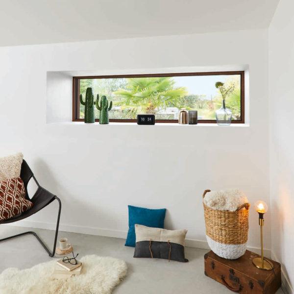 Fenêtre fixe panoramique avec cactus